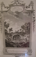 Engraving of Beaver Hunting showing Native hunters using rifles to shoot beavers in multi story lodges, almost a cartoon
